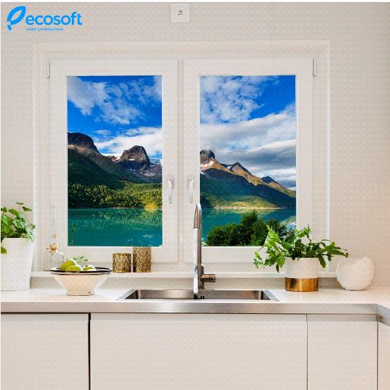 З фільтром Ecosoft все реально