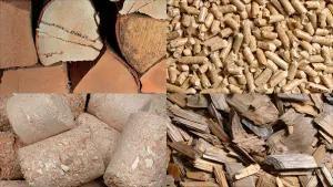 Виды топлива для котлов на биомассе